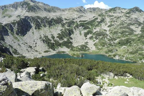 Imagine a Lacului de pește Banderishko | Lucky Bansko SPA & Relax