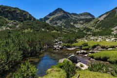 Rezervele din Muntele Pirin