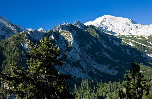 Rezervația Bayuvi Dupki din Muntele Pirin