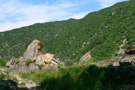 Rezervația Tisata din Muntele Pirin