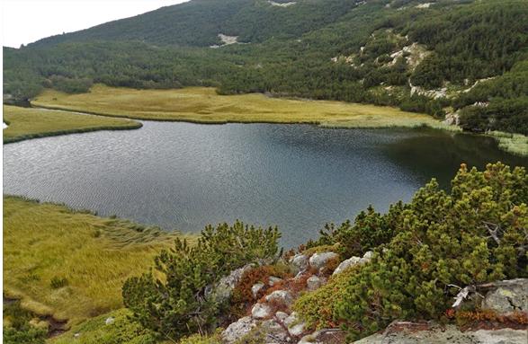 Lacurile Vapa