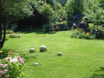 Grădină și curte
